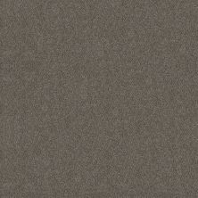 Shaw Floors Simply The Best Boundless II Net Slate Stone 00105_5E504