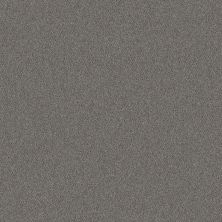 Shaw Floors Simply The Best Without Limits I Net Silver Spoon 00502_5E507