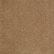 Shaw Floors Value Collections Sandy Hollow Cl Iv Net Windmill 00720_5E512