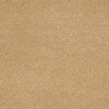 Shaw Floors Value Collections Sandy Hollow Cl Iv Net Cork 00722_5E512