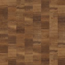 Shaw Floors 5th And Main Union Square Elite Sutter 00683_5M203
