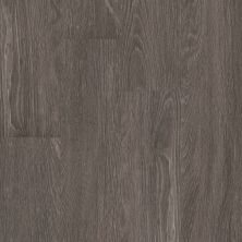 Shaw Floors 5th And Main Symbiotic 12 Carbon 00564_5M302