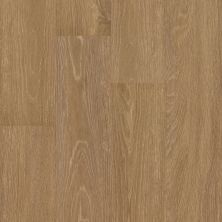Shaw Floors 5th And Main Symbiotic 5.0 Reed 00256_5M308
