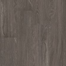 Shaw Floors 5th And Main Symbiotic 5.0 Carbon 00564_5M308