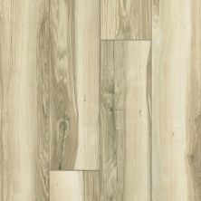 Shaw Floors 5th And Main Expedition Plus Palmetto 00259_5M401
