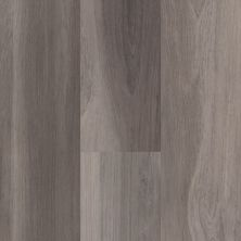 Shaw Floors 5th And Main Calibrate Ardeo 05009_5M501