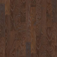 Shaw Floors Meritage Homes Britannia Walk 2-5 Weathered Saddle 00941_634MR