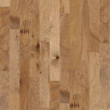 Shaw Floors Meritage Homes Britannia Walk 2-5 Allspice 02002_634MR