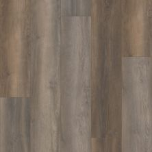 Shaw Floors Resilient Residential Unrivaled 9″ Burnley Oak 02901_678CT