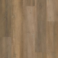Shaw Floors Resilient Residential Unrivaled 9″ Crystal Oak 02903_678CT