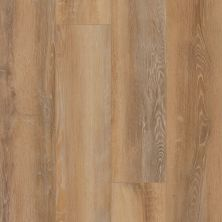Shaw Floors Resilient Residential Unrivaled 9″ Celo Oak 02908_678CT