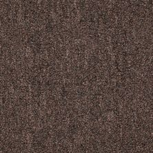 Philadelphia Commercial Mercury Carpets Velocity Brown Leather 00010_6832D