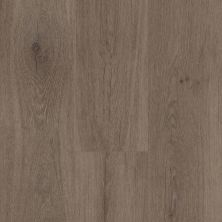 Shaw Floors SFA Adventure XL Hd+accent Singapore Brown 07075_700SA