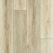 Shaw Floors SFA Adventure Hd+ Accent Driftwood 01053_703SA