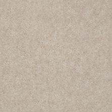 Shaw Floors Mercury Carpets Bahama Light Taupe 00009_7123D