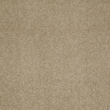 Shaw Floors Pelotage I Himalaya 00702_746A5