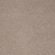 Shaw Floors Pelotage I Oxford 00901_746A5