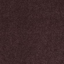 Shaw Floors Pelotage I Mountain Haze 00904_746A5