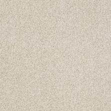 Shaw Floors Infinity Soft Zymes Cheviot 00104_749J8