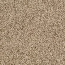 Shaw Floors Infinity Soft Zymes Fawn 00110_749J8