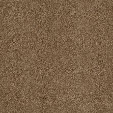 Shaw Floors Infinity Soft Zymes Southern Andes 00202_749J8