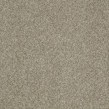 Shaw Floors Infinity Soft Zymes Columbia 00502_749J8