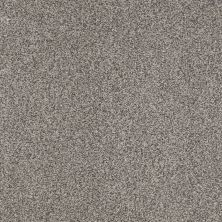 Shaw Floors Infinity Soft Zymes Arctic Frost 00503_749J8