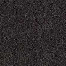 Shaw Floors Infinity Soft Zymes Black Sheep 00508_749J8