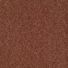 Shaw Floors Infinity Soft Zymes Grand Canyon 00602_749J8