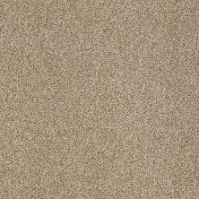 Shaw Floors Infinity Soft Zymes Llama 00701_749J8