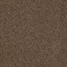 Shaw Floors Infinity Soft Zymes Great Plains 00705_749J8