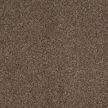 Shaw Floors Infinity Soft Zymes Pebble Creek 00706_749J8