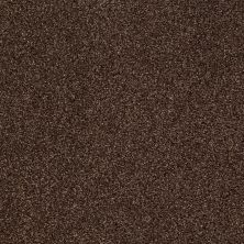 Shaw Floors Infinity Soft Zymes Bison 00707_749J8