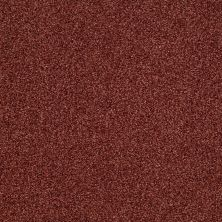 Shaw Floors Infinity Soft Zymes Coastal Sunset 00802_749J8
