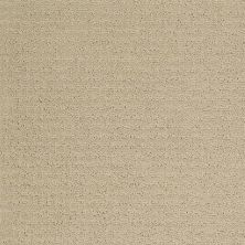 Shaw Floors Infinity Abbey/Ftg Grenadins Dunes 00102_749K6