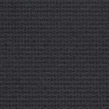 Shaw Floors Infinity Abbey/Ftg Grenadins Indigo 00411_749K6