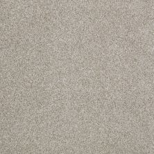 Anderson Tuftex SFA Four Seasons Gray Dust 00522_786SF