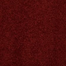 Anderson Tuftex SFA Four Seasons Cranberry 00665_786SF