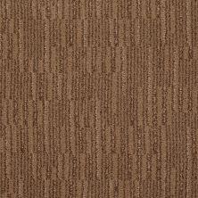 Anderson Tuftex SFA Bernini Indian Spice 00654_796SF