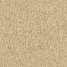 Shaw Floors Infinity Abbey/Ftg Glistening Style Jute 00102_7B3I4