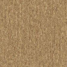 Shaw Floors Infinity Abbey/Ftg Glistening Style Basketry 00700_7B3I4