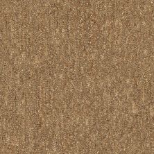 Shaw Floors Infinity Abbey/Ftg Glistening Style Birch 00702_7B3I4