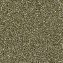 Shaw Floors Creative Elegance (floors To Go) Grand Feelings I Chameleon 00302_7B3I8