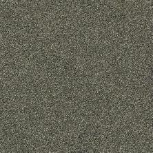 Shaw Floors Creative Elegance (floors To Go) Grand Feelings I Lush 00303_7B3I8
