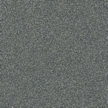 Shaw Floors Creative Elegance (floors To Go) Grand Feelings I Slate 00401_7B3I8
