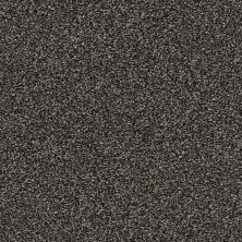 Shaw Floors Creative Elegance (floors To Go) Grand Feelings I Shadow 00504_7B3I8