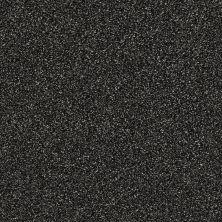 Shaw Floors Creative Elegance (floors To Go) Grand Feelings I Truffle 00506_7B3I8