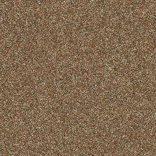 Shaw Floors Creative Elegance (floors To Go) Grand Feelings I Bronze 00602_7B3I8
