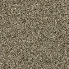 Shaw Floors Creative Elegance (floors To Go) Grand Feelings I Leather 00704_7B3I8