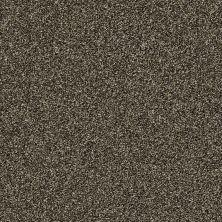 Shaw Floors Creative Elegance (floors To Go) Grand Feelings I Bark 00705_7B3I8